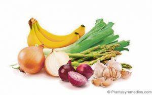 Frutas y verduras. prebióticos y probióticos. Centro Pronaf